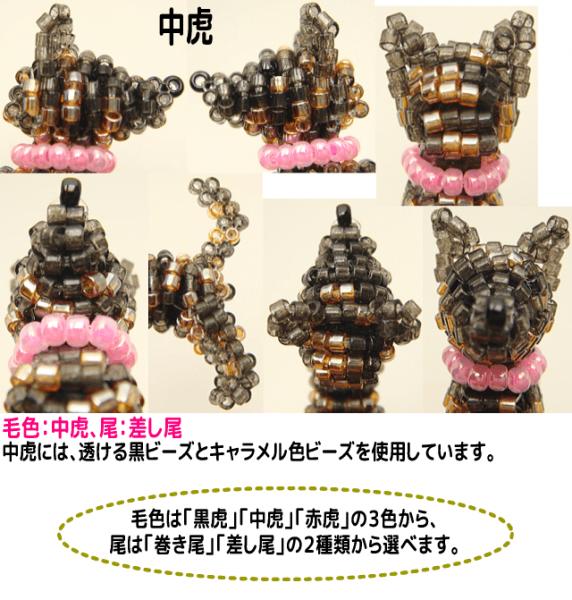 甲斐犬 詳細2
